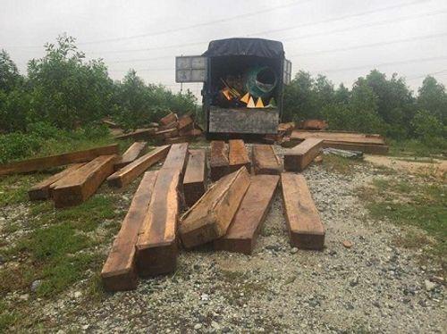 Kiểm tra xe thiếu đèn chiếu sáng, phát hiện thêm gỗ lậu - Ảnh 1