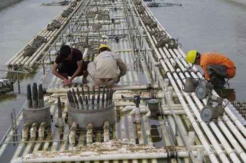 Hải Phòng phá dỡ công trình nhạc nước trăm tỷ - Ảnh 1