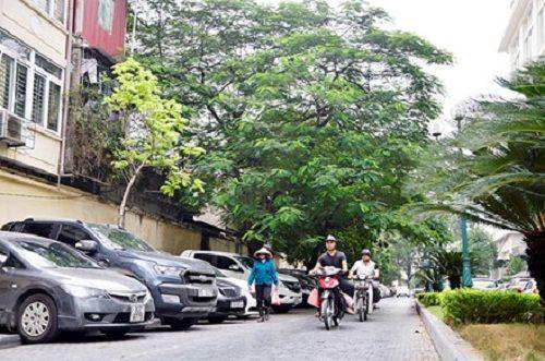 Hà Nội gắn tên phố kỷ niệm 70 năm toàn quốc kháng chiến - Ảnh 1
