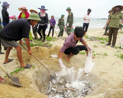 7 nhóm đối tượng được bồi thường do sự cố môi trường biển - Ảnh 1