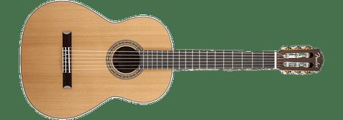 Cách chọn  đàn Guitar tốt và chuẩn nhất cho bạn - Ảnh 2