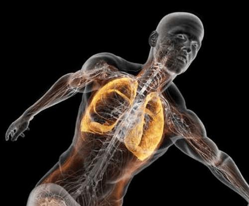 Những điều lí thú về cơ thể người khiến bạn kinh ngạc - Ảnh 1