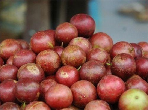 """""""Tuổi thơ dữ dội"""" với những loại trái cây dân giã - Ảnh 6"""