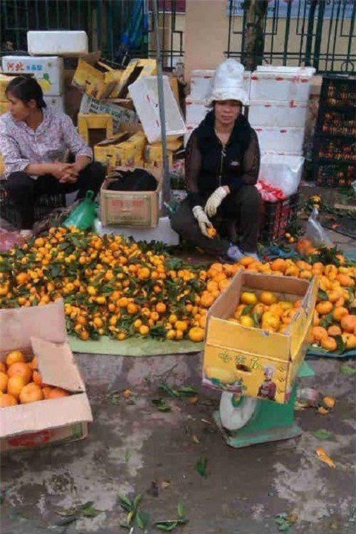 15 năm buôn hoa quả Trung Quốc và cái giá phải trả - Ảnh 2