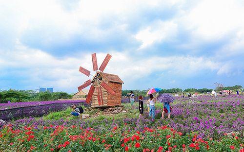 5 địa điểm chụp ảnh lãng mạn ở Hà Nội thu hút giới trẻ nhất - Ảnh 3