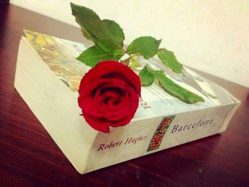 Lạ và quen với 5 cách chọn quà tặng bạn gái ý nghĩa nhất - Ảnh 2