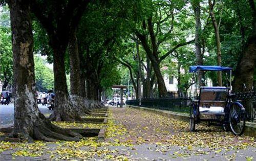 Top 5 địa điểm chụp ảnh mùa thu ở Hà Nội đẹp đến nao lòng - Ảnh 4