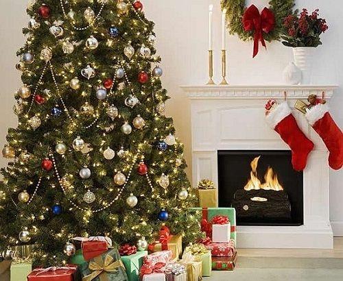 Bật mí về nguồn gốc cây thông Noel trong lễ Giáng Sinh - Ảnh 2