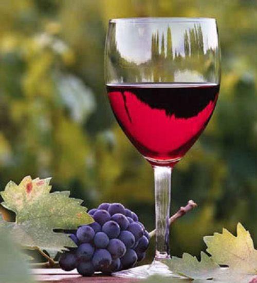 Kinh nghiệm chọn rượu vang có thể bạn chưa biết - Ảnh 2