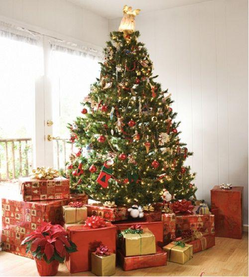 Bật mí về nguồn gốc cây thông Noel trong lễ Giáng Sinh - Ảnh 3
