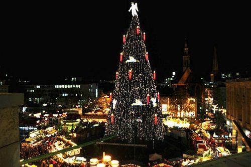 Bật mí về nguồn gốc cây thông Noel trong lễ Giáng Sinh - Ảnh 1