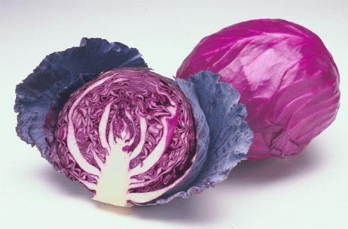 Mách bạn 9 thực phẩm tốt cho sức khỏe mùa đông - Ảnh 6