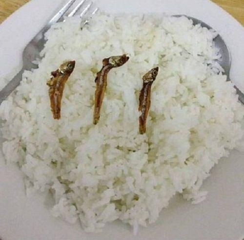 Hài hước những bữa cơm cuối tháng cộp mác sinh viên - Ảnh 1