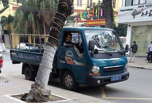 Công an Đà Nẵng phạt xe phường đỗ sai từ phản ánh qua Facebook - Ảnh 1
