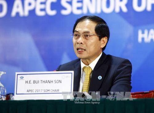 Đưa APEC gần hơn tới người dân và doanh nghiệp - Ảnh 1