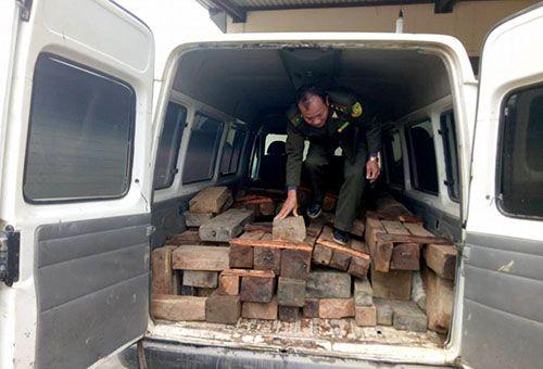 Ô tô chở gỗ lậu đâm thẳng vào xe của đội kiểm lâm để bỏ trốn - Ảnh 1