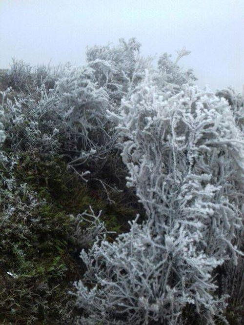 Mẫu Sơn lạnh âm 1 độ C, băng tuyết phủ trắng xóa - Ảnh 2