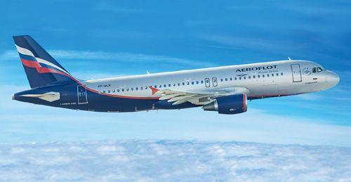 Bị cấm bay, nữ hành khách vẫn bay qua Nga - Ảnh 1