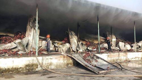 Hỏa hoạn thiêu rụi kho chứa 260 tấn thanh long ở Bình Thuận - Ảnh 1