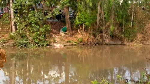 Phát hiện thi thể mặc áo bông nổi dưới kênh ở Tiền Giang - Ảnh 1