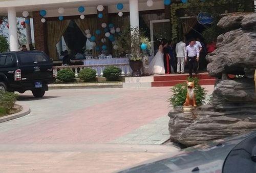Vụ hàng chục xe biển xanh đến đám cưới ở Thừa Thiên- Huế: Bí thư tỉnh nói gì? - Ảnh 1