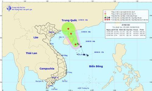 Áp thấp nhiệt đới giật cấp 8 quần thảo Biển Đông - Ảnh 1