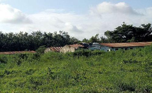 Choáng váng với khu biệt thự, hàng chục ha đất của cựu Bí thư thị xã Bến Cát vừa bị bắt - Ảnh 8