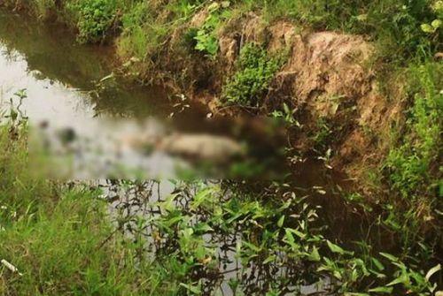 Vụ nữ sinh lớp 10 mất tích bí ẩn sau buổi tập văn nghệ: Tìm thấy thi thể dưới mương nước - Ảnh 1