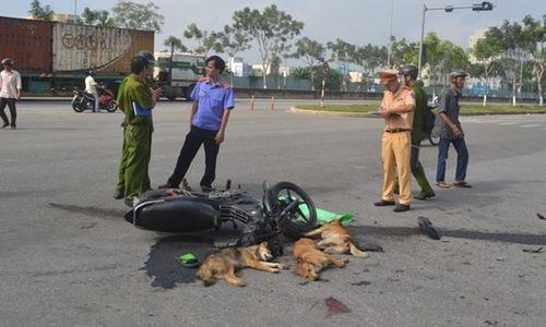 """2 """"cẩu tặc"""" gặp tai nạn bất tỉnh sau khi trộm 4 con chó - Ảnh 1"""