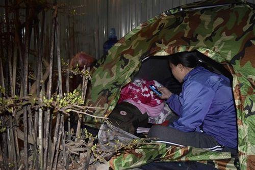 Phóng sự ảnh: Cảnh màn trời chiếu đất trong giá lạnh của người bán hoa tết ở Đà Nẵng - Ảnh 11