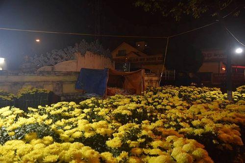 Phóng sự ảnh: Cảnh màn trời chiếu đất trong giá lạnh của người bán hoa tết ở Đà Nẵng - Ảnh 15