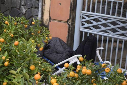 Phóng sự ảnh: Cảnh màn trời chiếu đất trong giá lạnh của người bán hoa tết ở Đà Nẵng - Ảnh 5