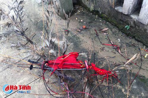Hạ cây nêu Tết, 2 anh em ruột bị điện giật phải nhập viện cấp cứu - Ảnh 1