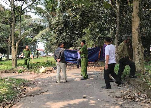 Phát hiện thi thể người đàn ông trong công viên bỏ hoang - Ảnh 1