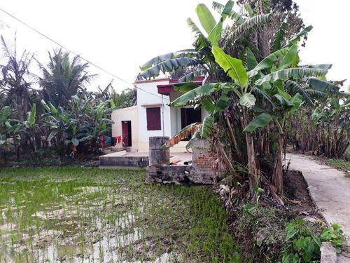 Vụ án liên quan Châu Việt Cường: Người mẹ nghèo khó thức trắng đêm không tin con trai gây tội ác - Ảnh 1