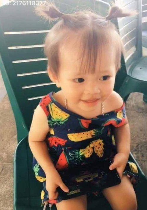 Hà Tĩnh: Bé gái hơn 2 tuổi mất tích bí ẩn hơn 1 tháng - Ảnh 1