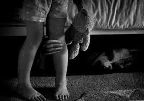Tạm giữ nghi can gần 60 tuổi ở Hải Phòng giở trò đồi bại với bé gái 3 tuổi - Ảnh 1