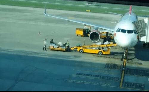 """Video: Nhân viên sân bay Đà Nẵng """"lia"""" hành lý hành khách gây bức xúc - Ảnh 1"""
