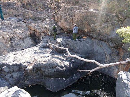 Đi rừng, phát hiện thi thể đầy hình xăm treo cổ trên cây - Ảnh 1