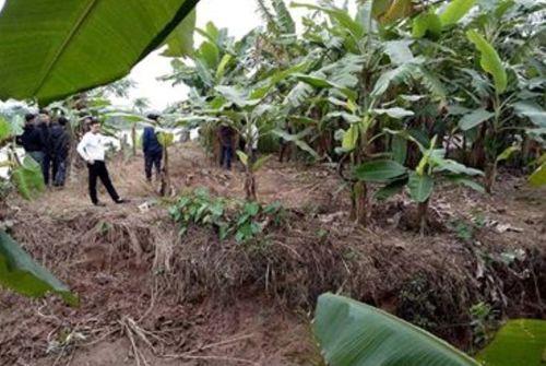 Vụ 3 thi thể trên sông ở Thái Bình: Một nạn nhân đang là giám đốc khách sạn - Ảnh 1