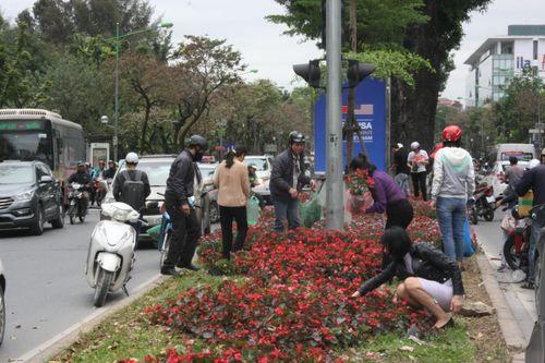 """Vụ nhiều người """"hôi"""" hoa trang trí sau thượng đỉnh Mỹ - Triều: Đề nghị trích xuất camera làm rõ - Ảnh 1"""