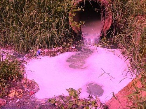 Dự kiến thanh tra 520 trường hợp có nguy cơ gây ô nhiễm môi trường - Ảnh 1