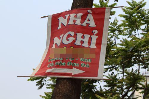 Chùm ảnh: Quảng cáo, rao vặt lem nhem khắp Thủ đô - Ảnh 7