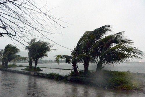 Thời tiết 14/9: Ảnh hưởng bão số 10, nhiều vùng mưa to, gió giật mạnh - Ảnh 2