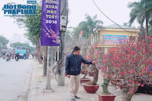 Công an quận Tây Hồ: Đẩy mạnh tuyên truyền, kiểm tra, đảm bảo an toàn chợ hoa Xuân 2018 - Ảnh 1