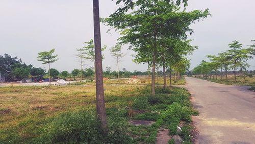 """Khu đô thị AIC Mê Linh: """"Siêu dự án"""" sau 10 năm vẫn là… cánh đồng - Ảnh 2"""