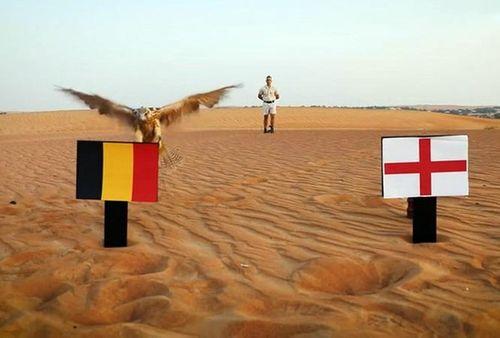 Những điều thú vị trước trận Anh – Bỉ - Ảnh 2