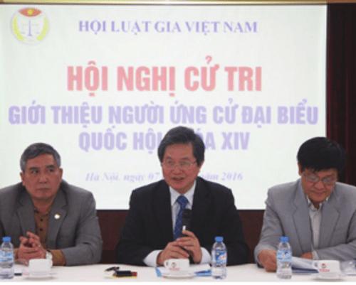 10 sự kiện nổi bật của Hội luật gia Việt Nam năm 2016  - Ảnh 1