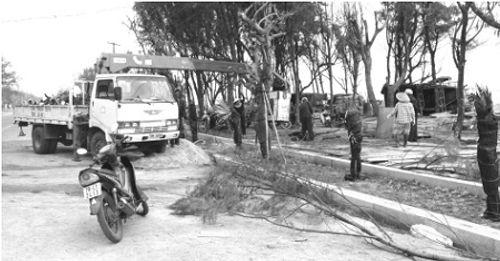"""Phú Yên: Xôn xao tỉnh nghèo cải tạo 1,1km đường đi bộ """"ngốn""""… hơn 68 tỷ đồng  - Ảnh 1"""