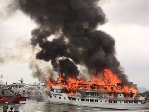 """""""Xóa sổ"""" 6 tàu du lịch trên vịnh Hạ Long - Ảnh 1"""